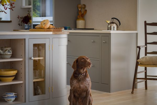 Oak shaker kitchen painted in farrow & ball moles breath with dog in front