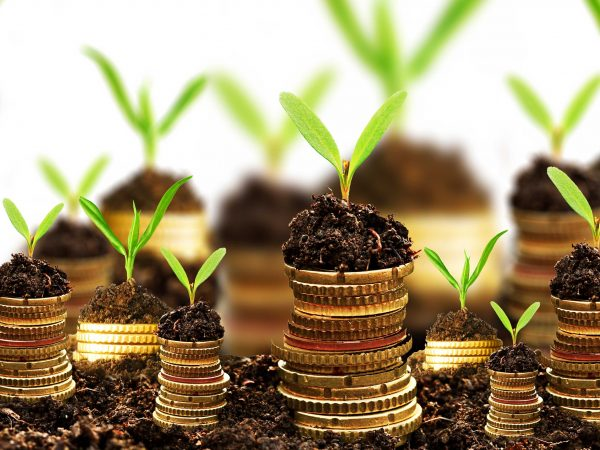 Running a sustainable business - coins piled up with soil and a plant growing out of it.