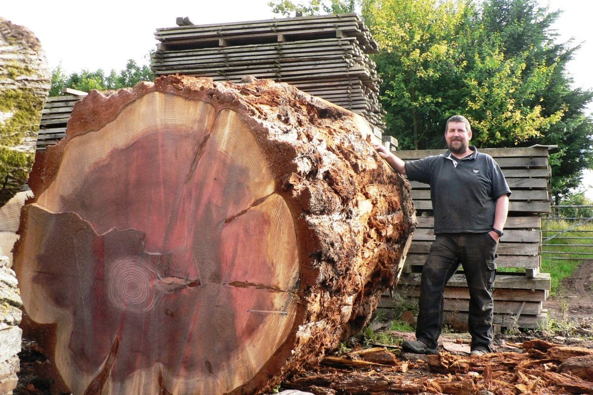 David from Interesting Timbers with huge sequoia log before milling